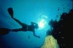 Tauchen in Ägypten im Roten Meer